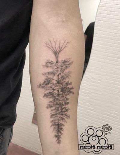 tatuaje pino brazo pamplona